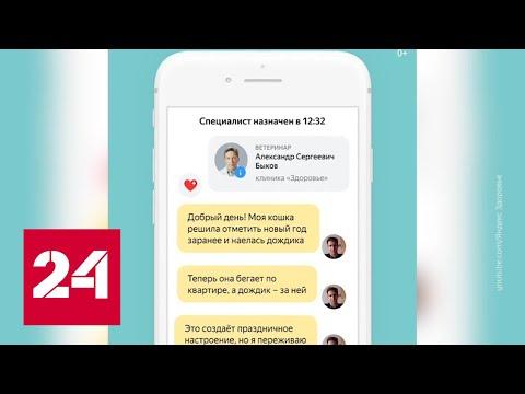 """""""Яндекс"""" заканчивает эксперимент со """"Здоровьем"""" и обустраивает """"умный дом"""" - Россия 24"""