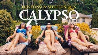 CALYPSO LUIS FONSI STEFFLON DON STEF WILLIAMS REGGAETON DANCE VIDEO
