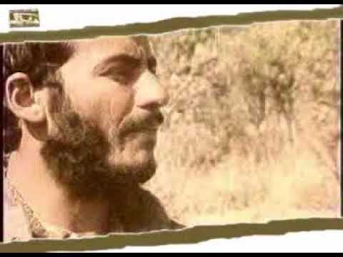 Ahangaran IRAN war song