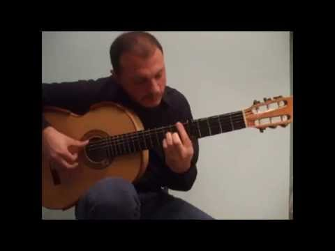 PIRATES OF THE CARIBBEAN - Flavio Sala, best guitar version Videos De Viajes