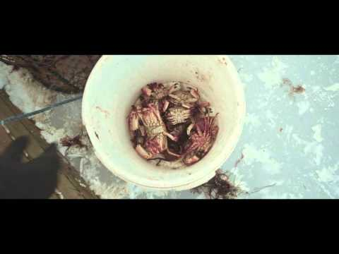 BOMBUS - Deadweight (OFFICIAL VIDEO)