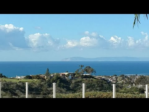 7 Rim Ridge Homes For Sale Newport Coast Pelican Hill RE/MAX Premier Realty Senka Plese  Kinney Yong