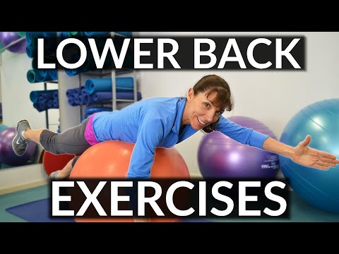 How To Strengthen Your Lower Back - Physio Exercises