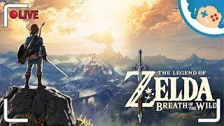 The Legend of Zelda: Breath of the Wild PL | Luźny strumyk popyrkonowy
