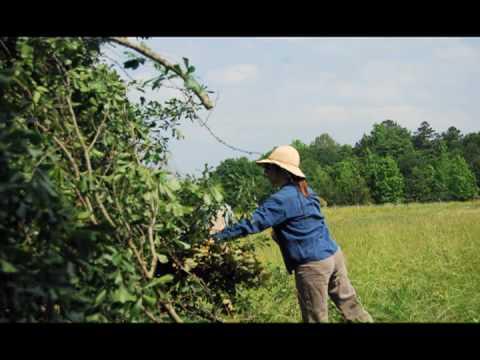 Darby Farm -- Farmer For A Day.mov