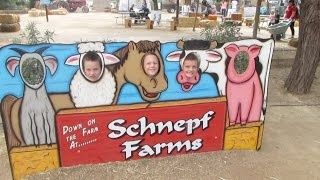 Hanging at Schnepf Farms
