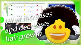 The Growth Behavior of Hair - What Increases and Decreases it (Part 4/4) Thumbnail