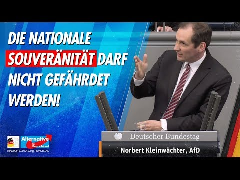 Die nationale Souveränität darf nicht gefährdet werden! - Norbert Kleinwächter - AfD-Fraktion