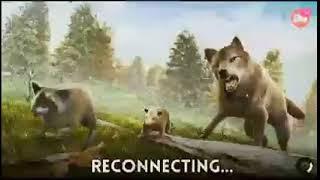 ¡Mírame hacer streaming de The Wolf en Omlet Arcade!