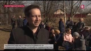Смотреть видео Дачная Амнистия не работает! - Пятый канал Санкт-Петербург онлайн