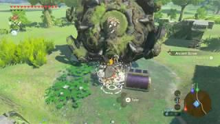 Infinite Spirit Orbs Botw Glitch
