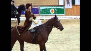 Marta Dryżałowska  w damskim siodle - Janów Podlaski 10.10.2010r
