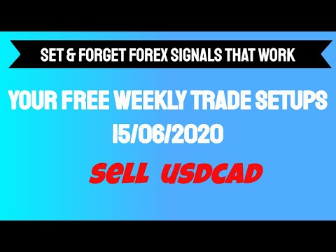 Set and forget forex signal zeenat patel investment solutions