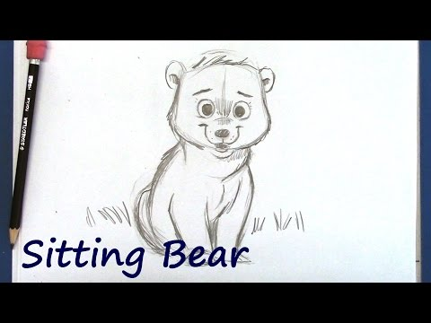 How to Draw a Cartoon Bear for Beginners