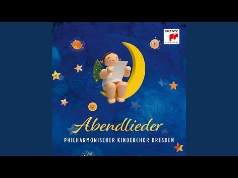 Adagio for Strings, Op. 11 mp3