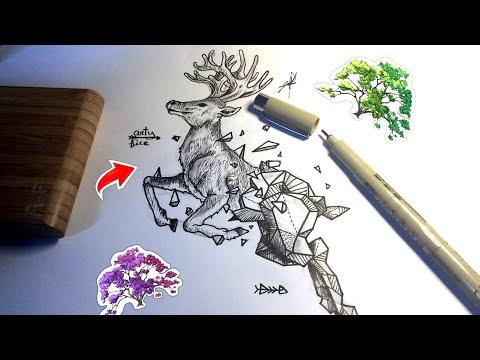 dessiner-un-cerf-réaliste