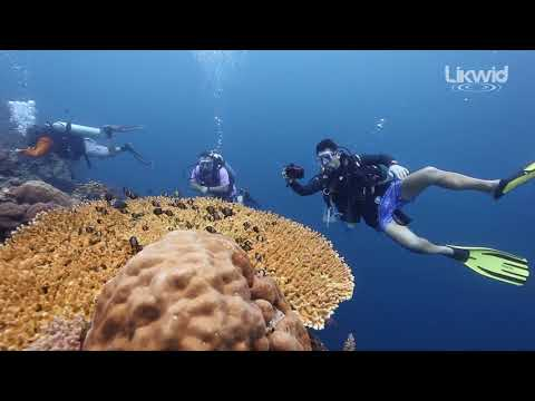 MTM & ERT SCUBA CENTER/TURKEY Sipadan Tour 2018