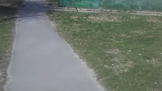 Дет-площадки закрыты