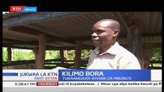 Athari za mbung'o | Jukwaa la KTN