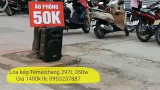Loa kéo Temeisheng 297L 1400k: Âm thanh to rõ, bán hàng hiệu quả bền bỉ.
