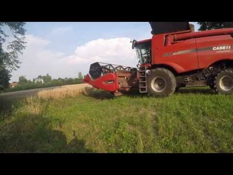 CASE IH Axial Flow 5140 | New holland | Sklízeň pšenice | wheat harvest