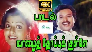 வாழை தோப்புக்குள்ளே ||Vaazhe Thoppukulle ||Mano, S. Janaki ,Love Duet H D Song