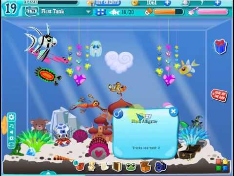Facebook happy aquarium youtube for Facebook fish game