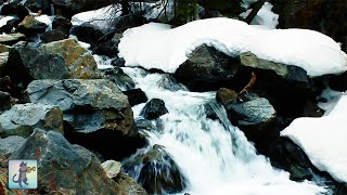 Winter Waterfall  Beautiful Relaxing Forest River Waterfall Nature Sounds • White Noise • 10 HOURS