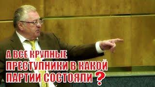 Жириновский выступил с критикой после доклада Генпрокурора Чайки!