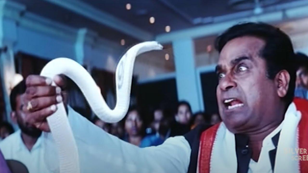 Brahmanandam Funny Comedy Scene | Brahmanandam | Silver Screen Movies