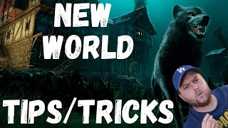 New World Tips, Tricks and Experience so far from a WoW classic player