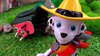Щенячий Патруль идёт в поход - Детское видео с игрушками