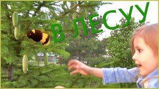 Семья Bagdasaryan Прогулка в лесу парка Кашкадан г.Уфа Россия.Семья.Дети.Отдых.Родители