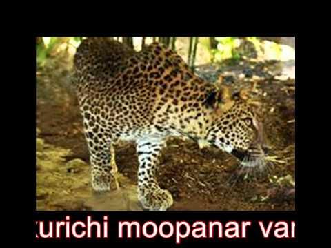 Moopanar வம்சம் சத்தியமங்கலம்