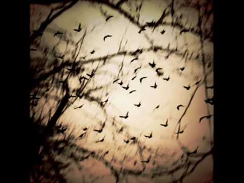 The Gathering-Nighttime Birds