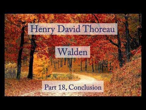 a report of walden by henry david thoreau Walden pond, the concord natural resource that inspired henry david thoreau's famous book walden or, life in the woods, is being soiled by.