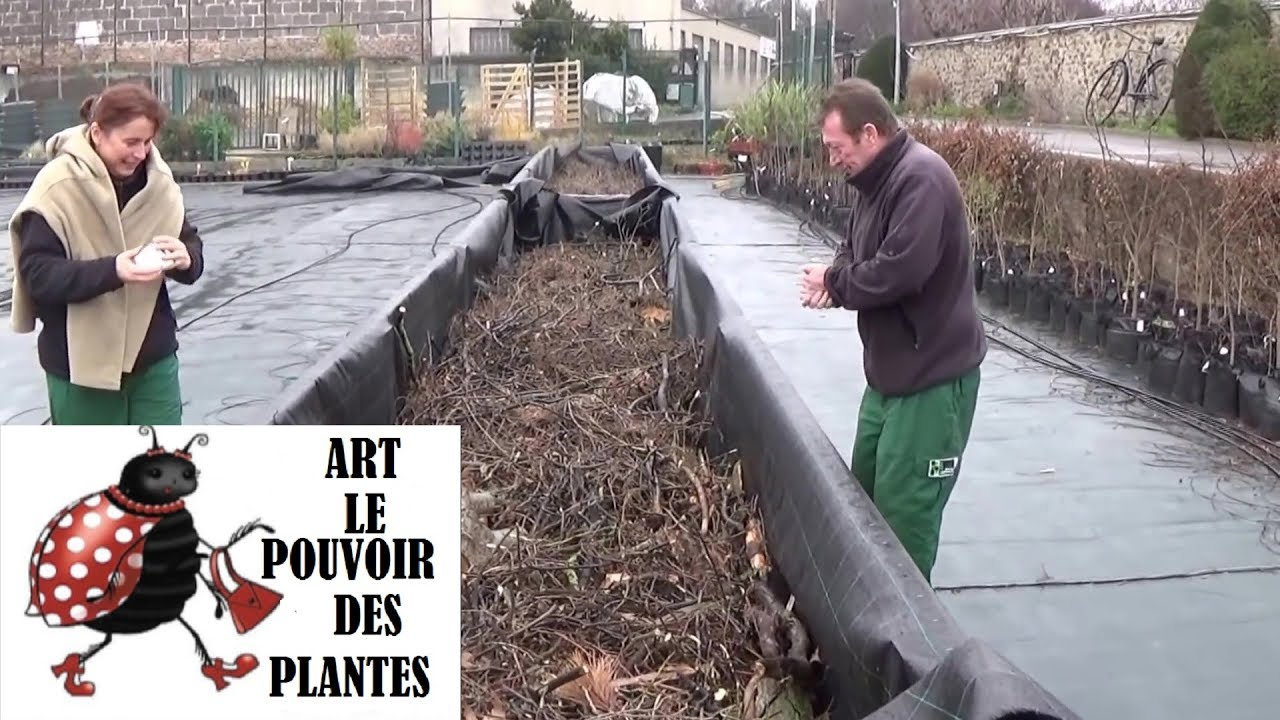 jardinage construction d 39 un bac de permaculture hors s doovi. Black Bedroom Furniture Sets. Home Design Ideas