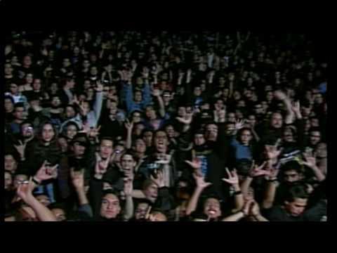 haggard-lost-robins-song-live-in-mexico-city-tim-luna