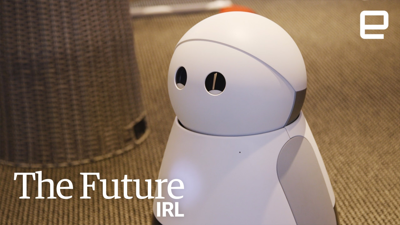 future uses of robots