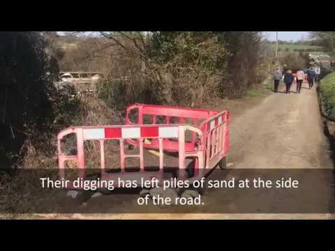 Badgers force road closure in Somersham in Suffolk