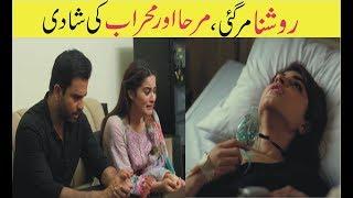 Ishq Tamasha Last Episode Complete Review II hum tv drama