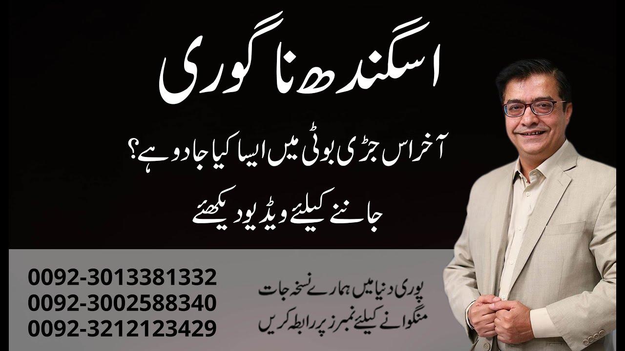 Download Asgandh Nagori (Ashwagandha) ke Fayde in Urdu | Hakeem Shah Nazir