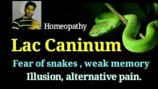 Lac caninum homeopathy remedy for mental illness, illusion, Fear of snakes, headache.