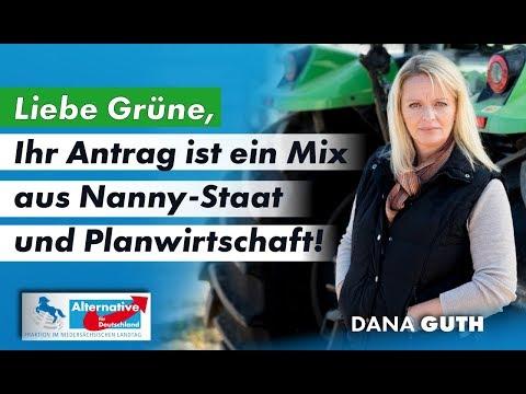 Liebe Grüne, Ihr Antrag ist ein Mix aus Nanny-Staat und Planwirtschaft! Dana Guth, MdL (AfD)