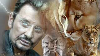 JOHNNY HALLYDAY clip dan sadydan animal