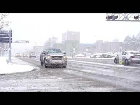 11-11-2019 Royal Oak, MI - Heavy Impactful Snowstorm