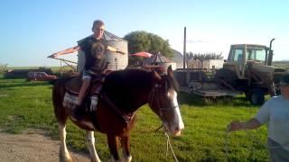 Erik horseback riding