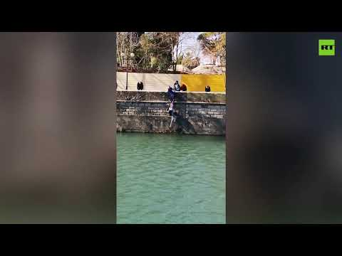 Brave woman pulls out drowning dog out of cold Sochi river