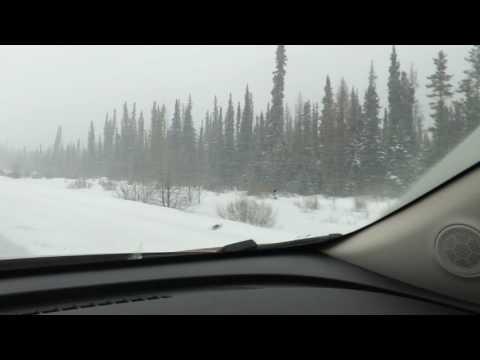 Trip Watson Lake to Whitehorse..Yukon..Canada..