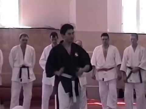 1999 Yoseikan Budo Hiroo and Mitchi Tuscaloosa Clinic 2 of 6